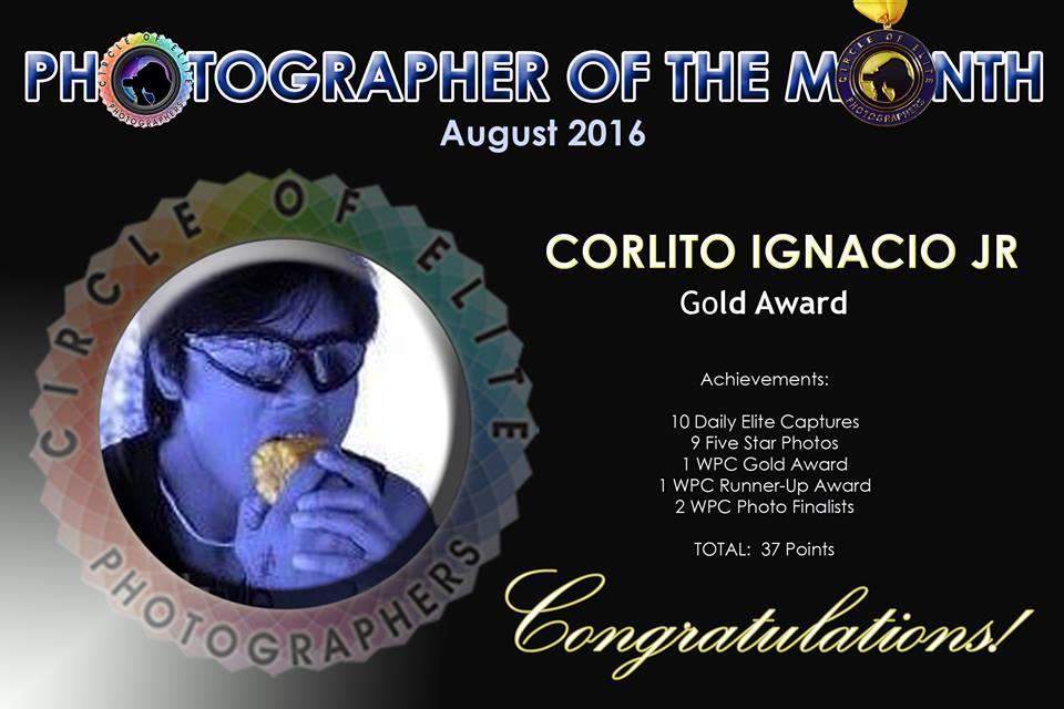 Gold Award - August 2016